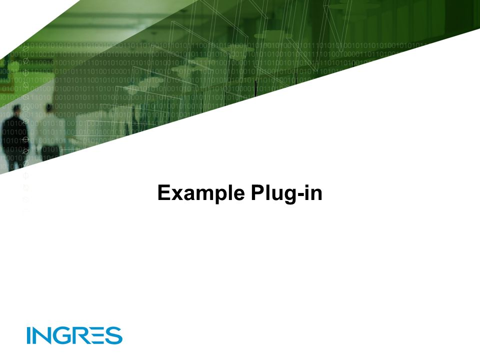 Example Plug-in © 2010 Ingres Corporation