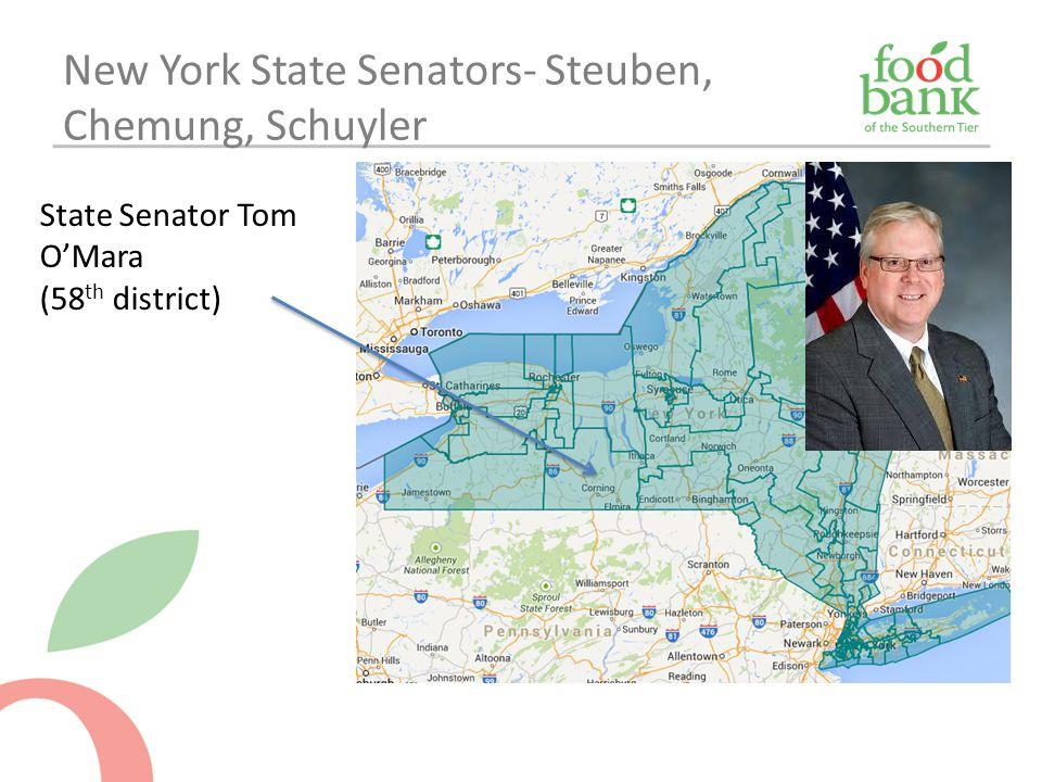 New York State Senators- Steuben, Chemung, Schuyler