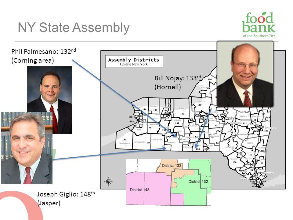NY State Assembly Phil Palmesano: 132nd (Corning area)