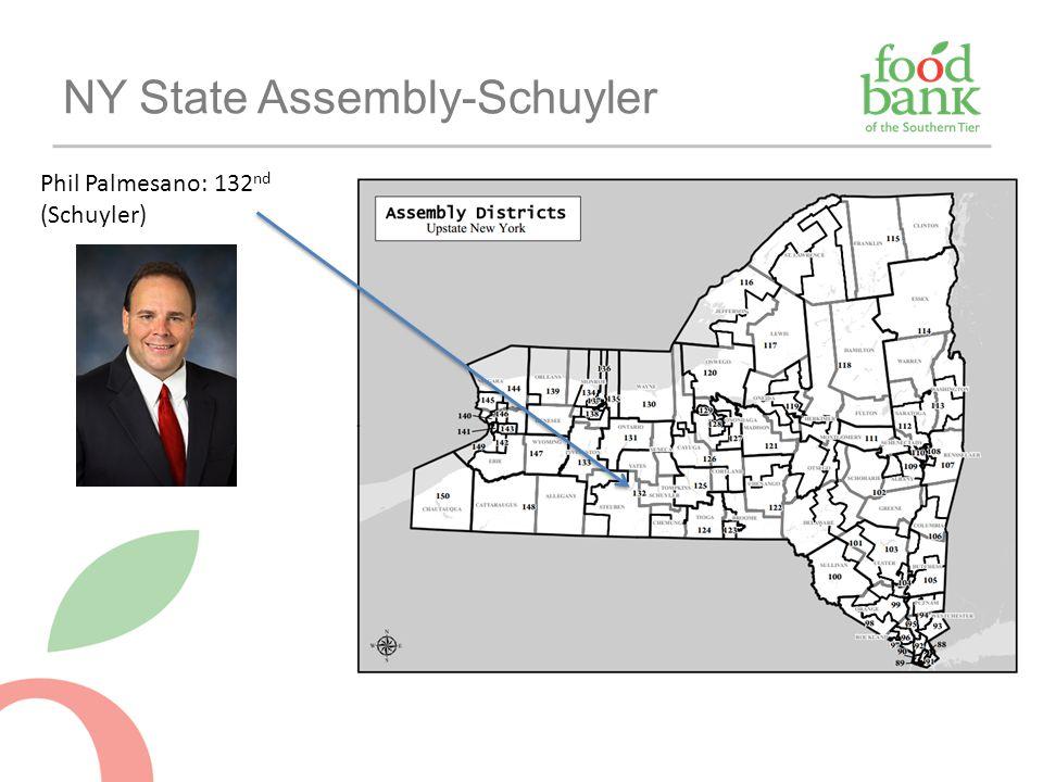 NY State Assembly-Schuyler