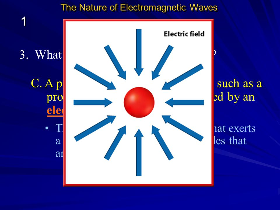 B. Forces and Fields 1 3. What are some types of force fields