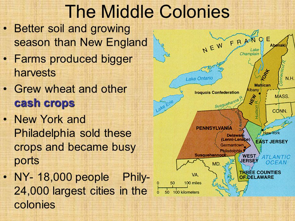 The Middle Colonies Better soil and growing season than New England