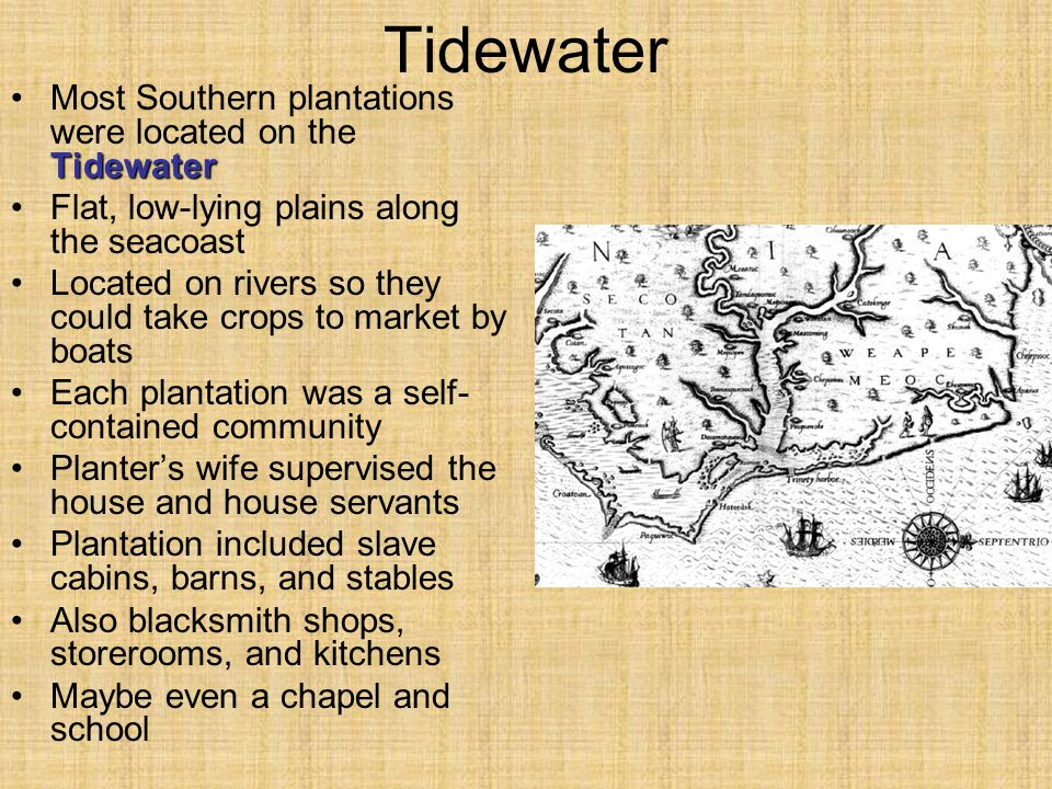 Tidewater Most Southern plantations were located on the Tidewater
