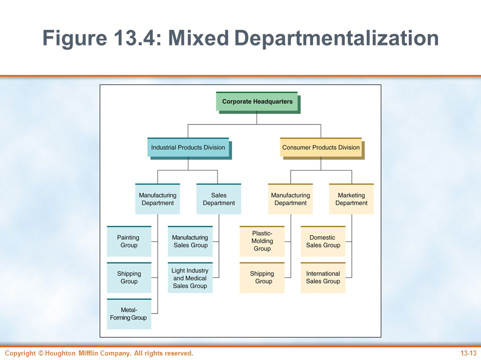 Figure 13.4: Mixed Departmentalization