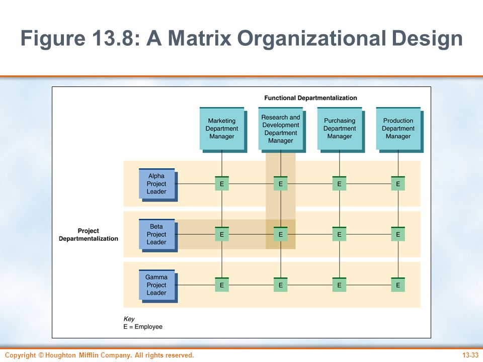 Figure 13.8: A Matrix Organizational Design