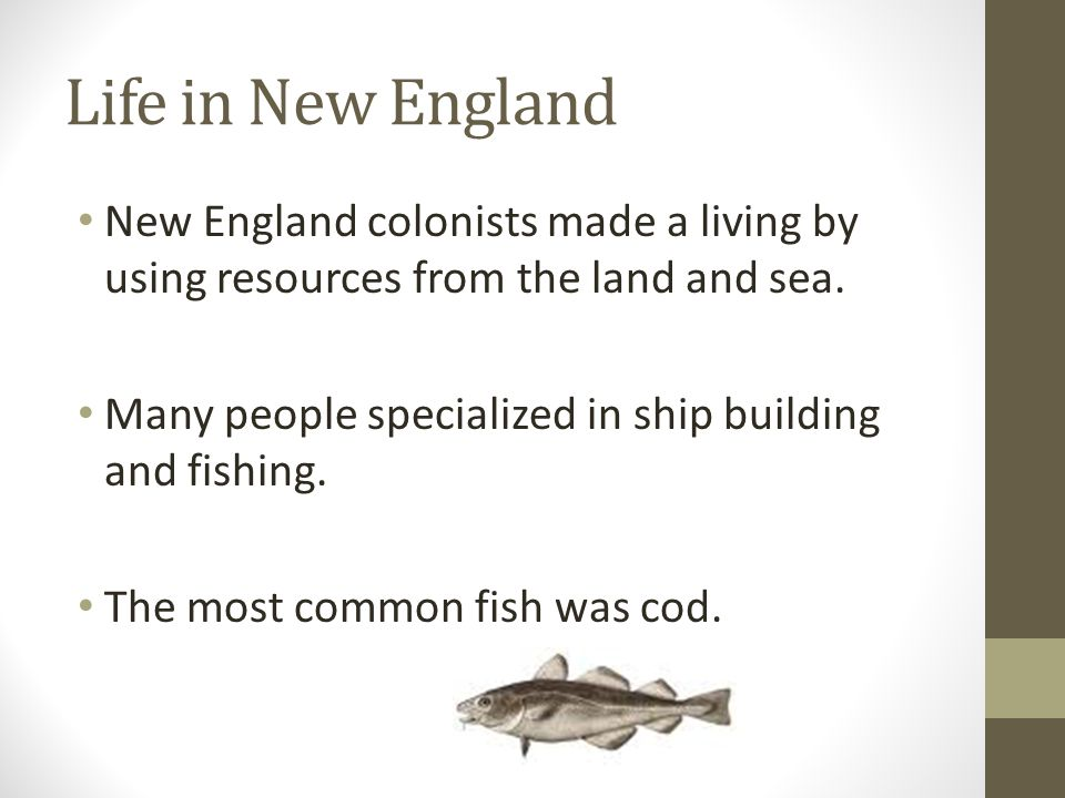 Life in New England New England colonists made a living by using resources from the land and sea.