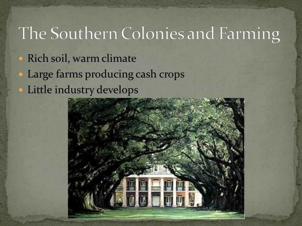 The Southern Colonies and Farming