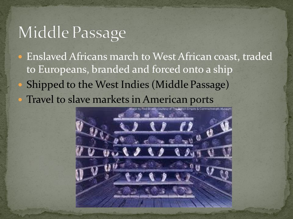 Middle Passage Enslaved Africans march to West African coast, traded to Europeans, branded and forced onto a ship.