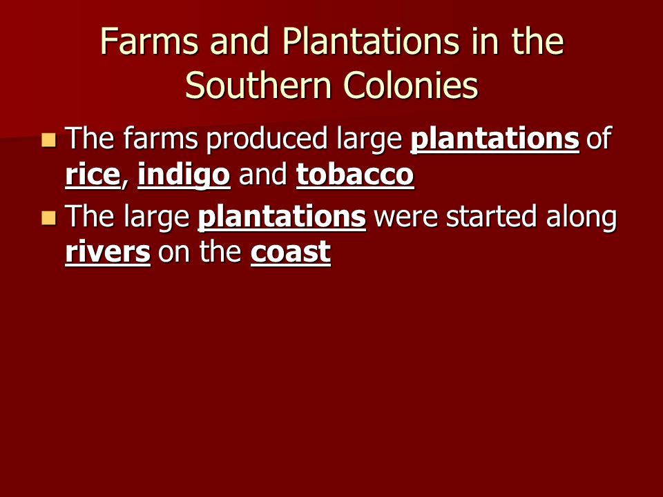 Farms and Plantations in the Southern Colonies