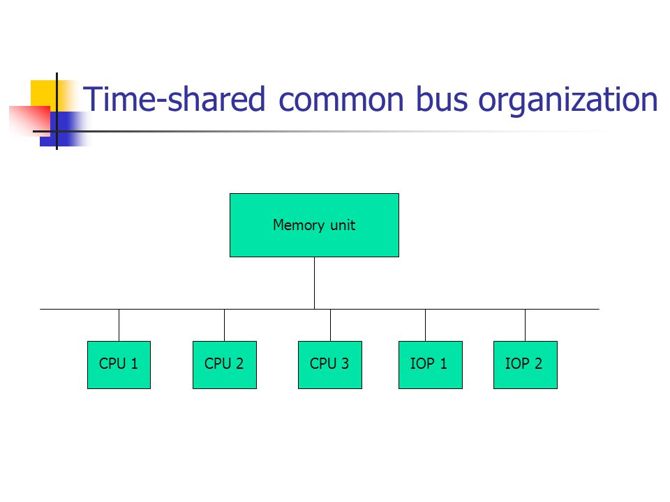 Time-shared common bus organization