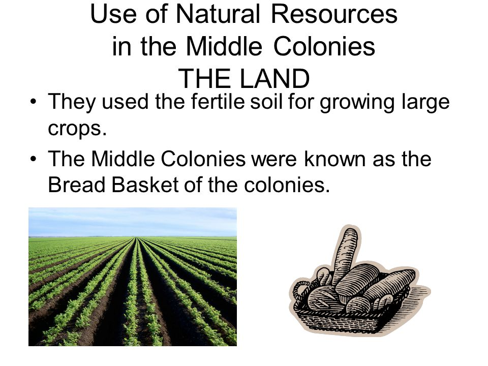 Use of Natural Resources in the Middle Colonies THE LAND