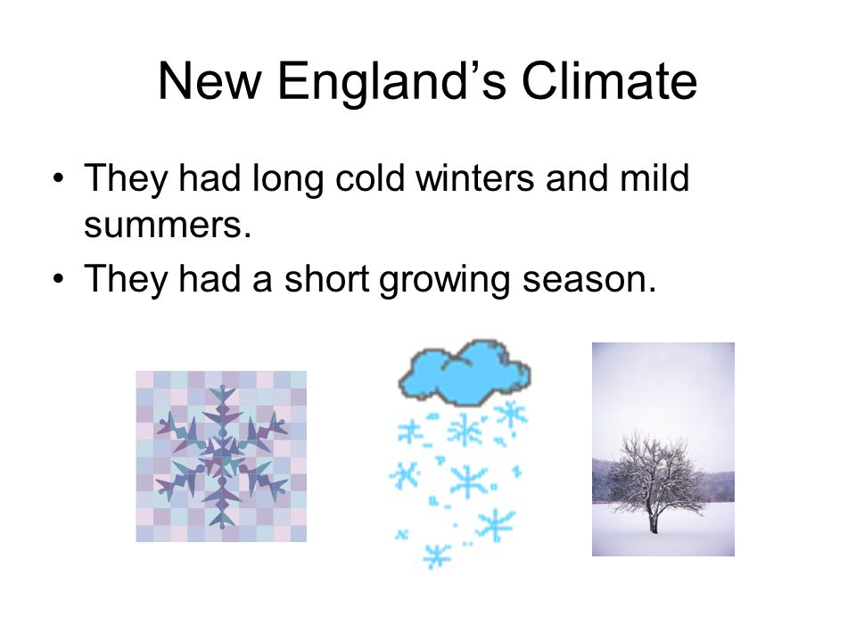 New England's Climate They had long cold winters and mild summers.