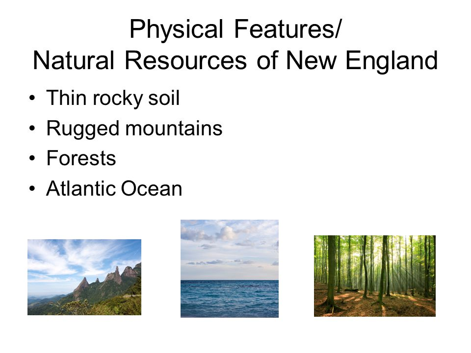 New Hampshire Food And Natural Resources