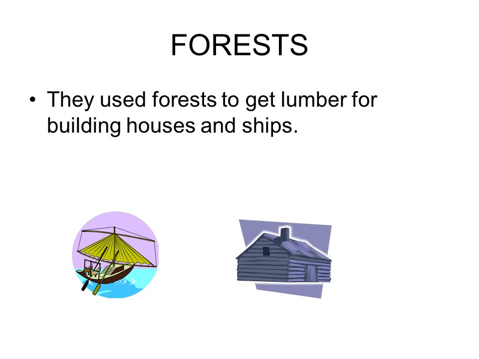 FORESTS They used forests to get lumber for building houses and ships.