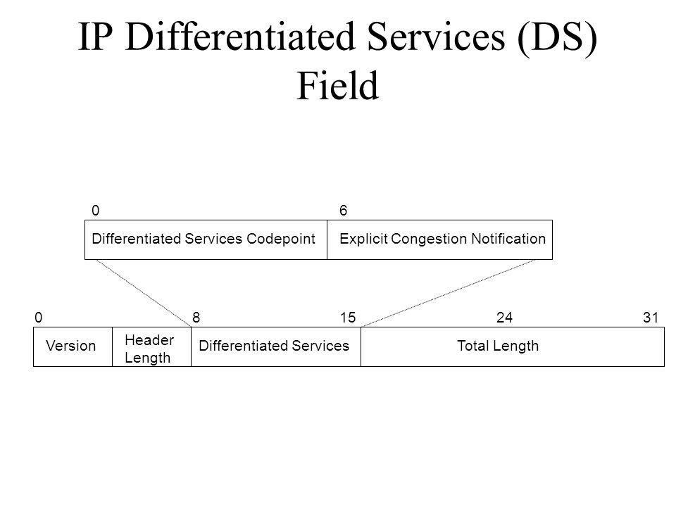 IP Differentiated Services (DS) Field