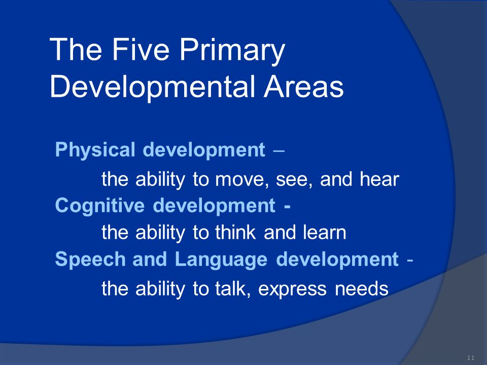 The Five Primary Developmental Areas