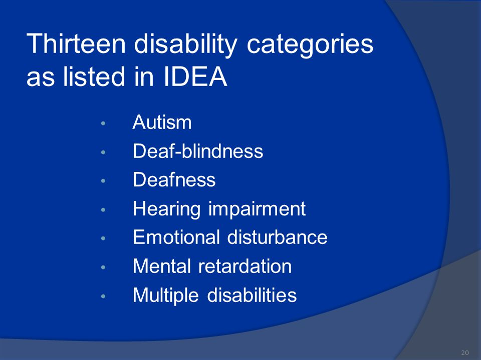 Thirteen disability categories as listed in IDEA