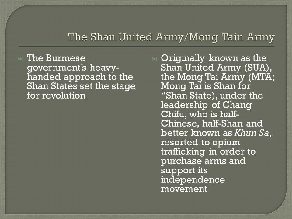 The Shan United Army/Mong Tain Army
