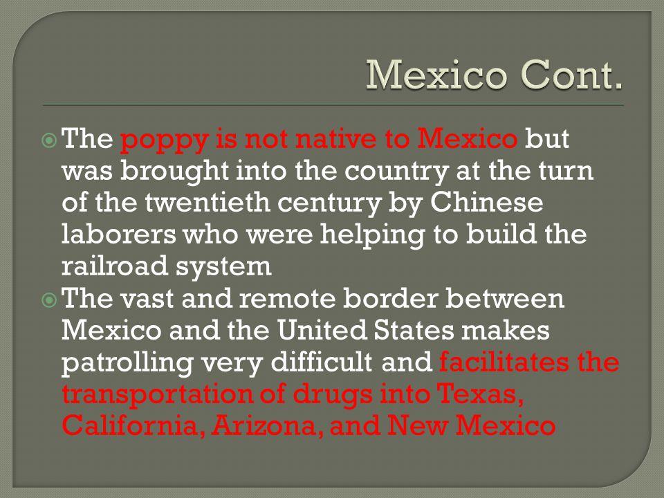 Mexico Cont.