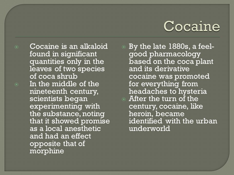 Cocaine Cocaine is an alkaloid found in significant quantities only in the leaves of two species of coca shrub.