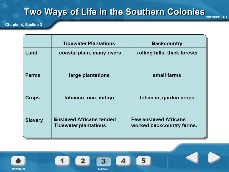 Two Ways of Life in the Southern Colonies