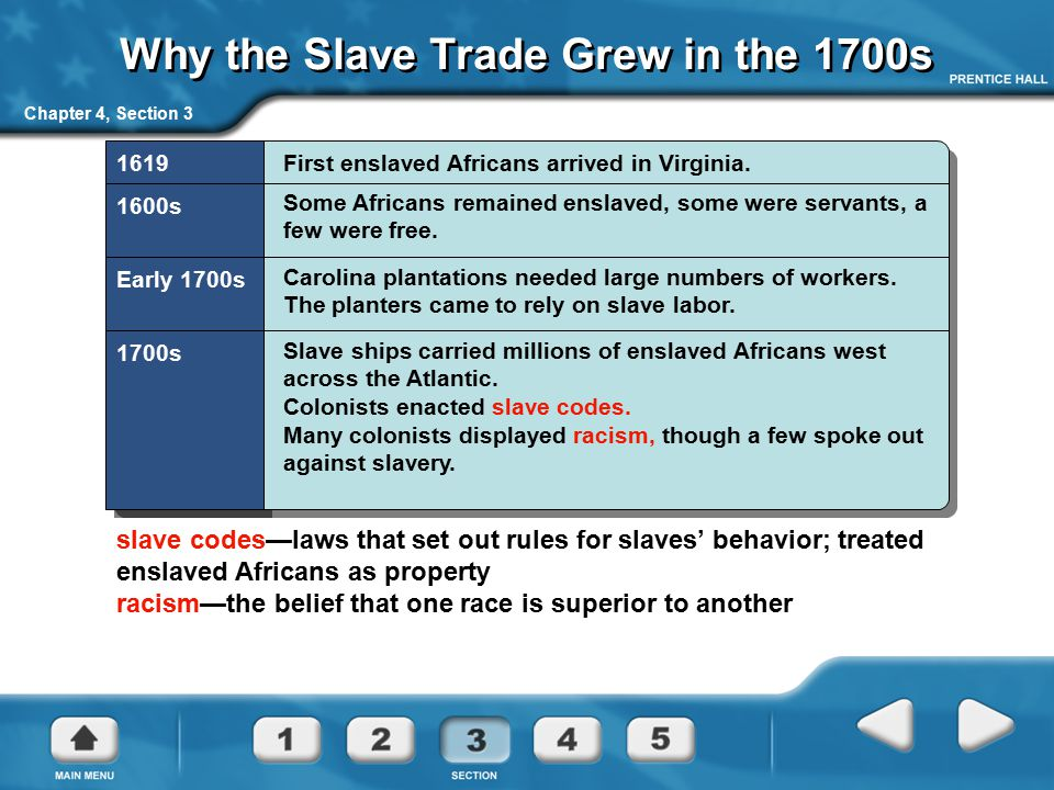 Why the Slave Trade Grew in the 1700s