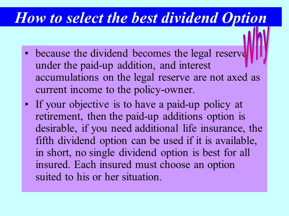 How to select the best dividend Option