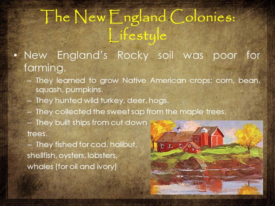 The New England Colonies: Lifestyle