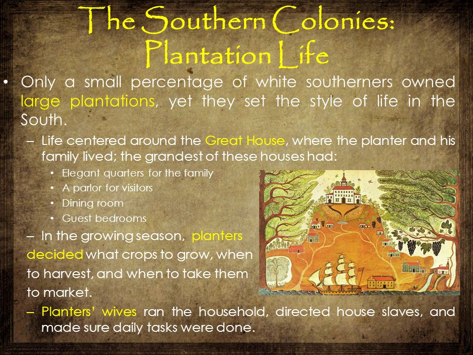 The Southern Colonies: Plantation Life