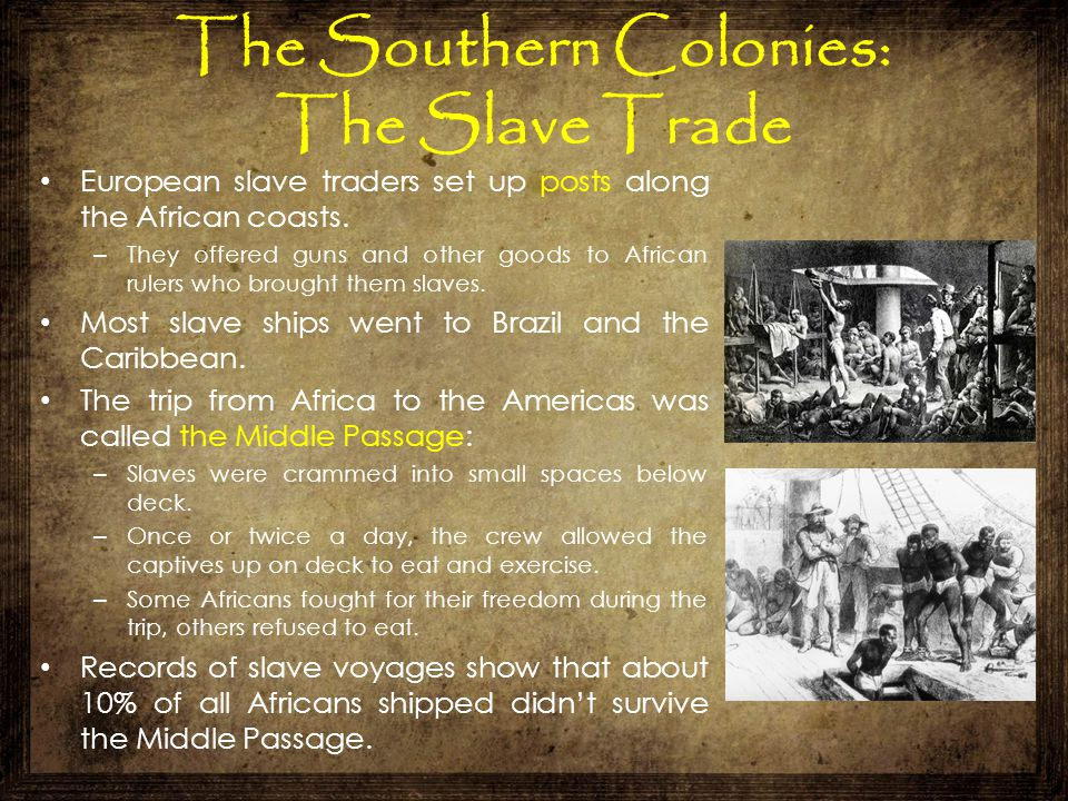 The Southern Colonies: The Slave Trade