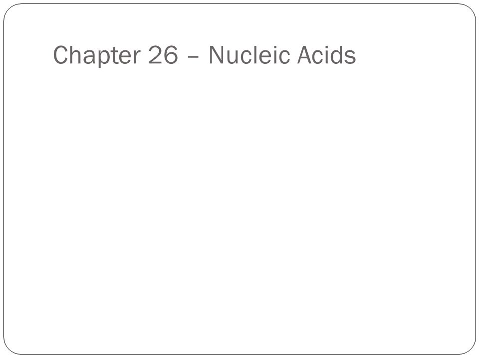 Chapter 26 – Nucleic Acids