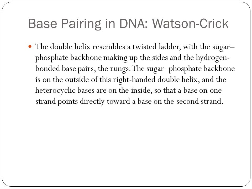 Base Pairing in DNA: Watson-Crick