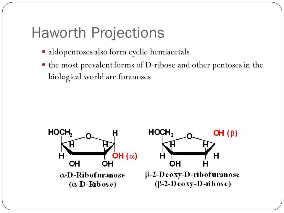 Haworth Projections aldopentoses also form cyclic hemiacetals