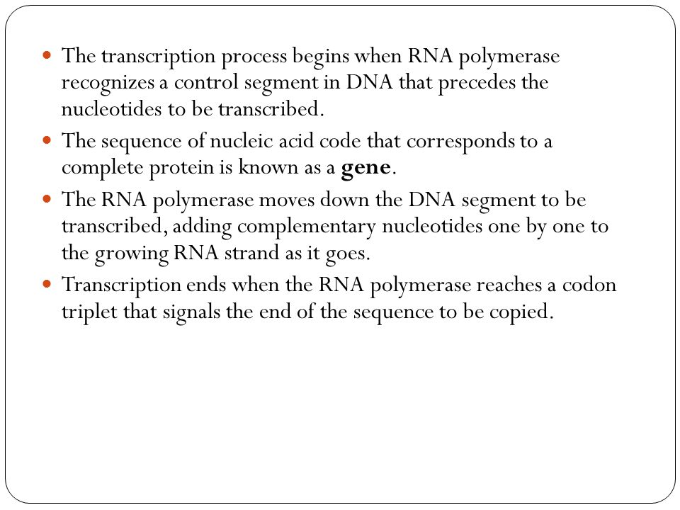 The transcription process begins when RNA polymerase recognizes a control segment in DNA that precedes the nucleotides to be transcribed.