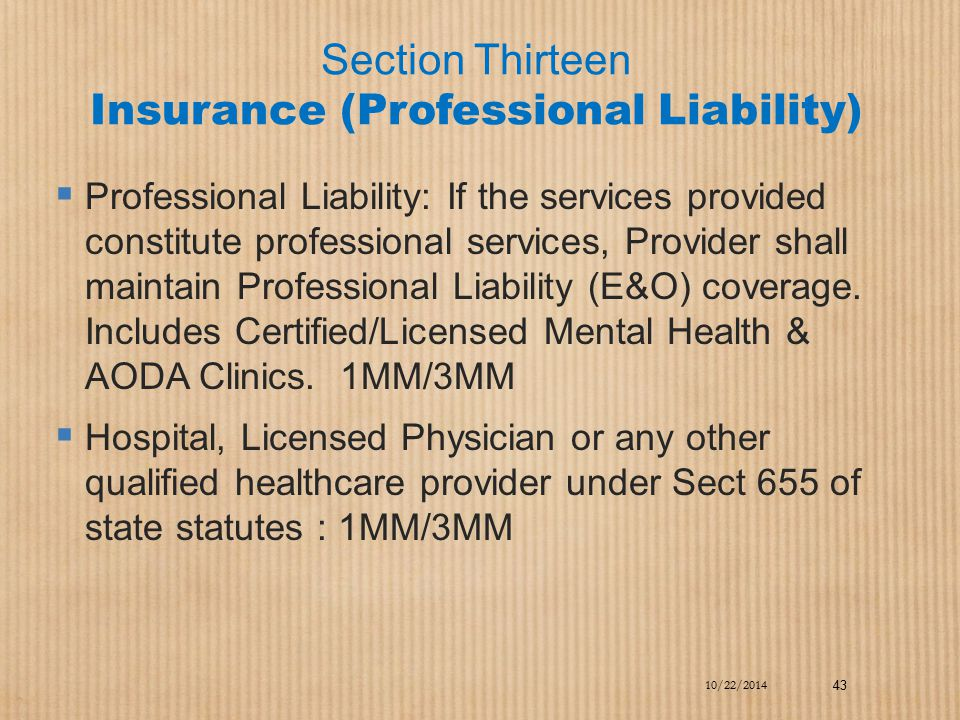 Section Thirteen Insurance (Professional Liability)