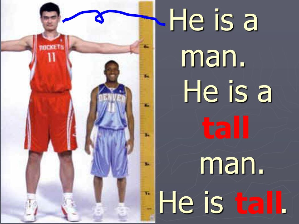 He is a man. He is a man. tall He is . tall