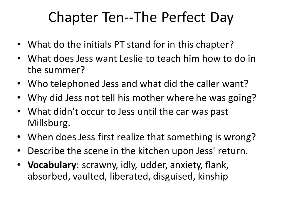 Chapter Ten--The Perfect Day