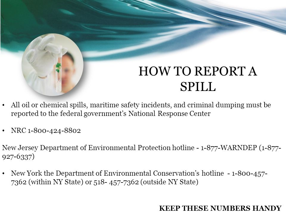 All oil or chemical spills, maritime safety incidents, and criminal dumping must be reported to the federal government's National Response Center