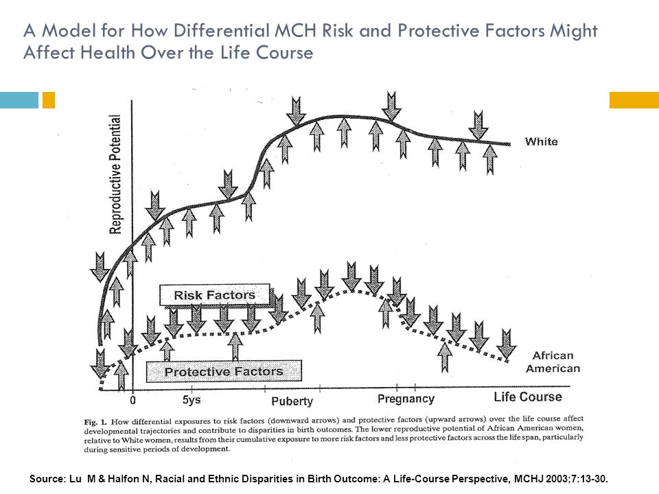A Model for How Differential MCH Risk and Protective Factors Might Affect Health Over the Life Course