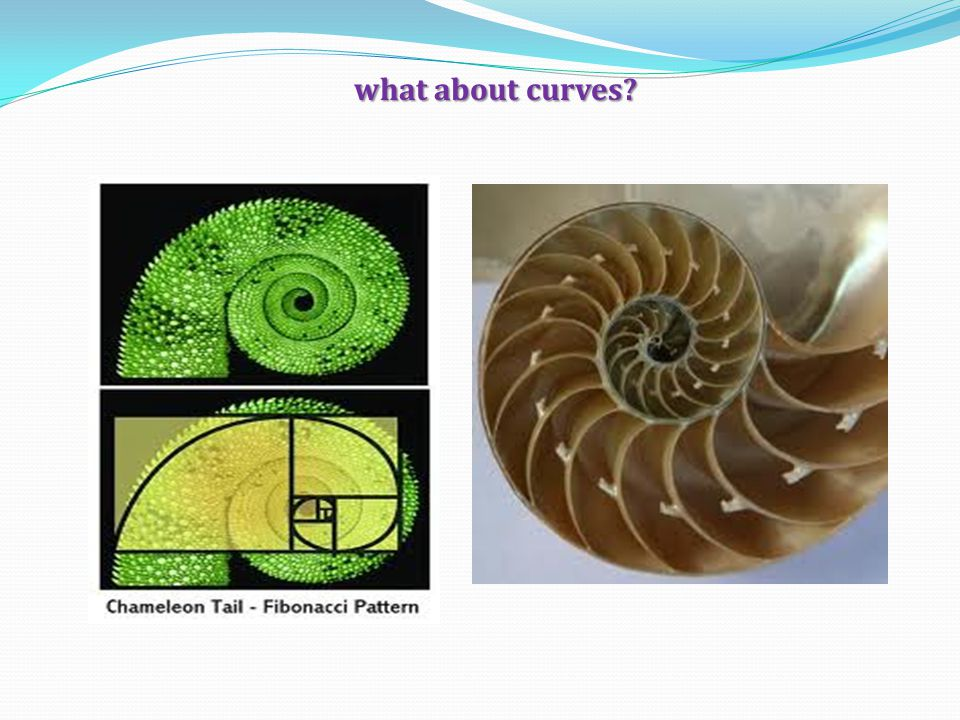 what about curves