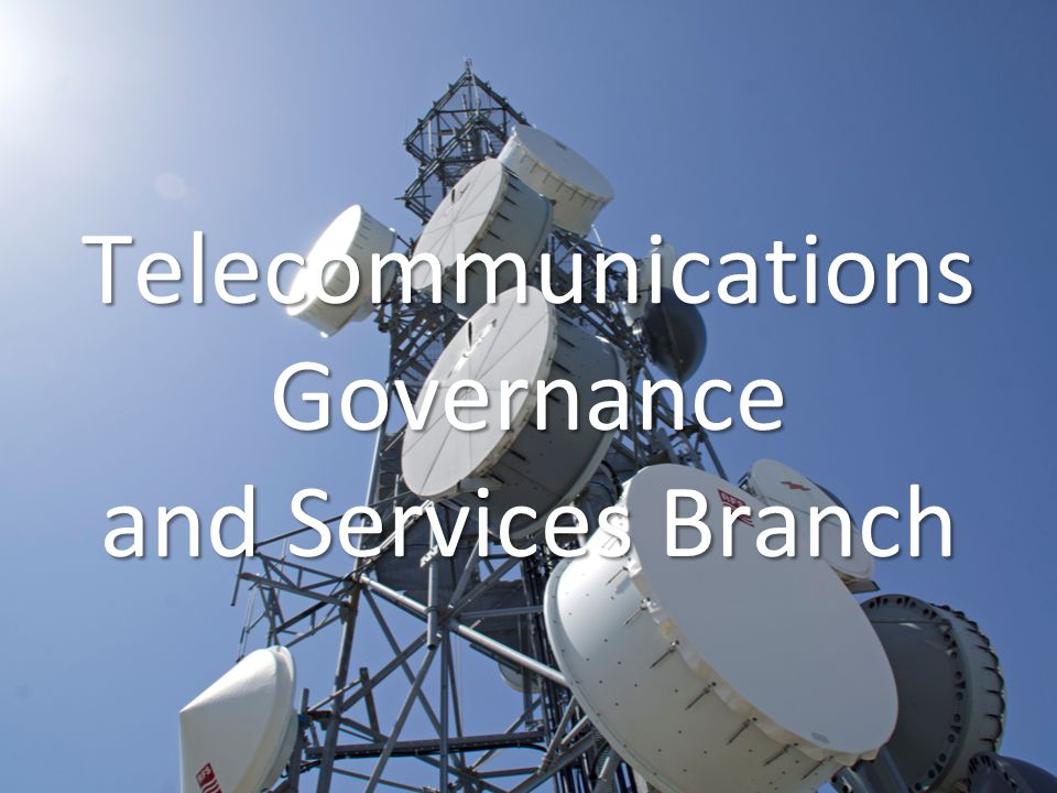Telecommunications Governance and Services Branch