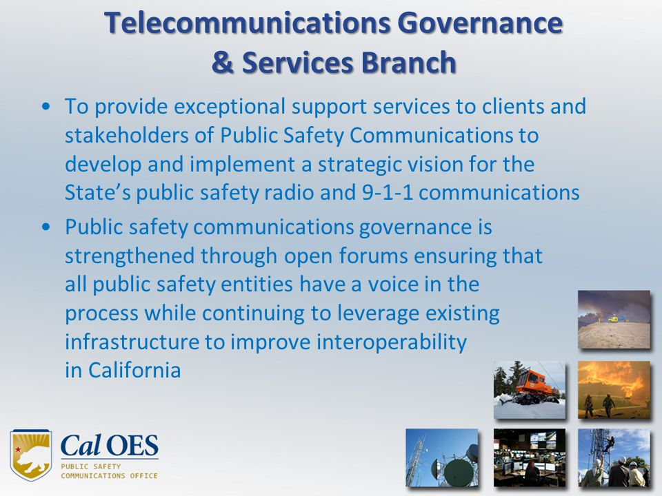 Telecommunications Governance & Services Branch