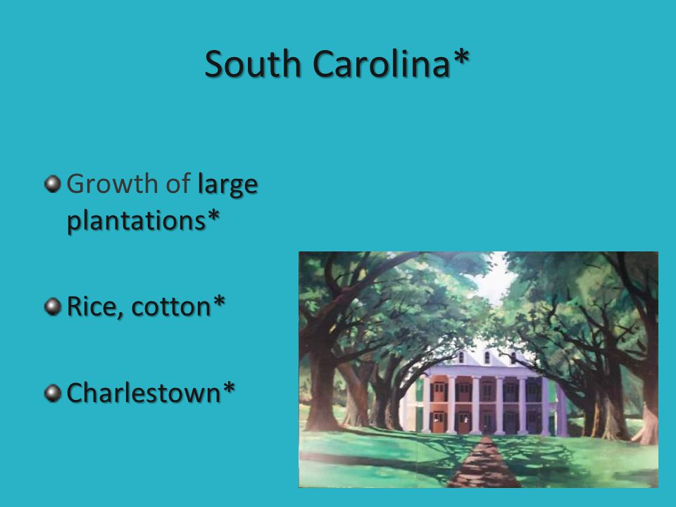 South Carolina* Growth of large plantations* Rice, cotton*