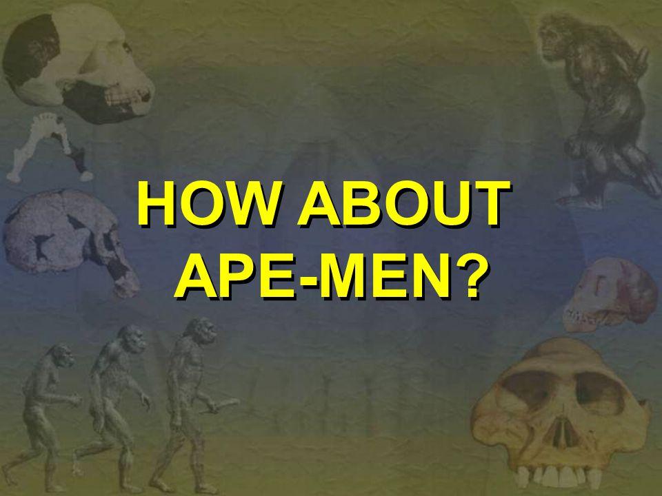 HOW ABOUT APE-MEN