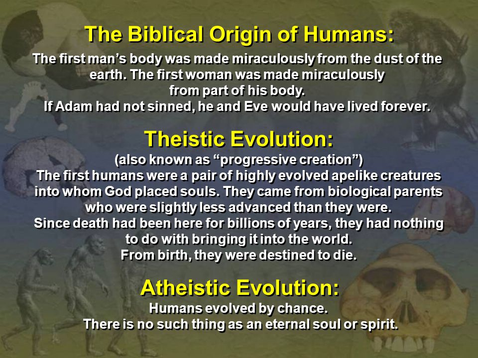 The Biblical Origin of Humans: