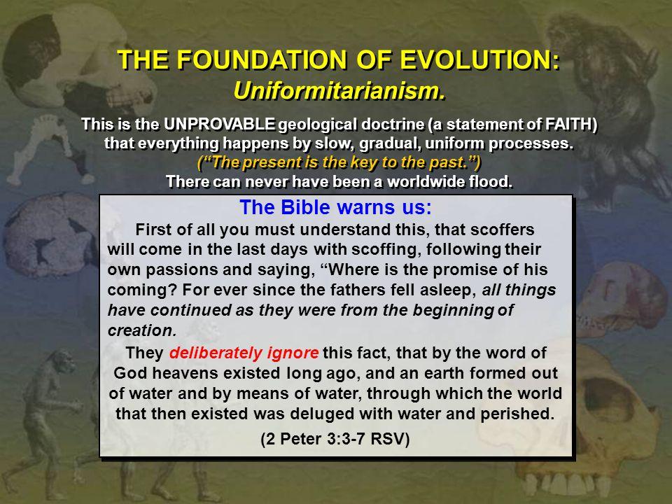THE FOUNDATION OF EVOLUTION: