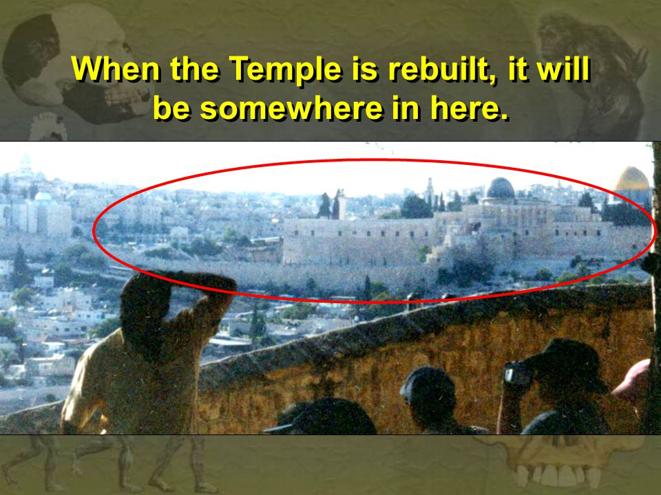 When the Temple is rebuilt, it will be somewhere in here.