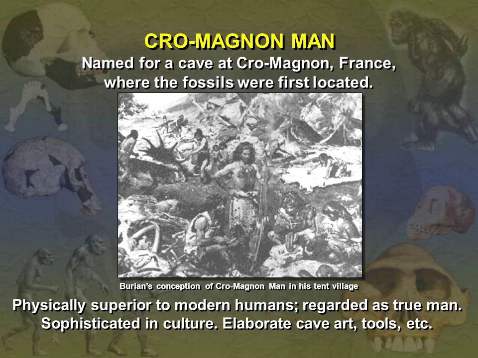 CRO-MAGNON MAN Named for a cave at Cro-Magnon, France,