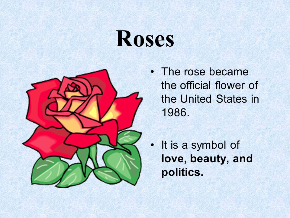 Roses The rose became the official flower of the United States in 1986.