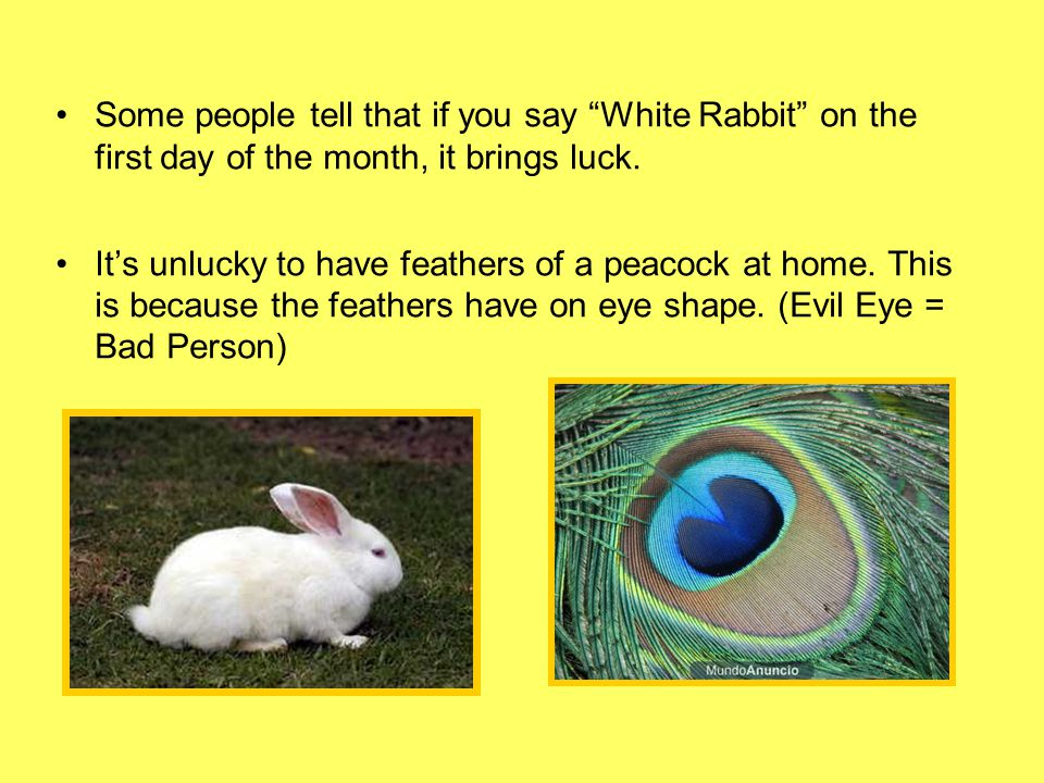 Some people tell that if you say White Rabbit on the first day of the month, it brings luck.